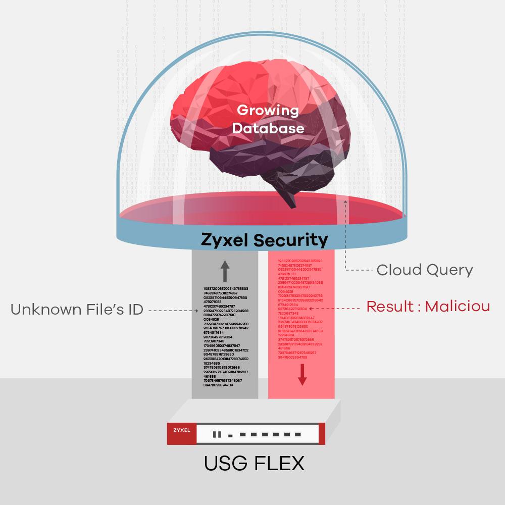 01-usgflex